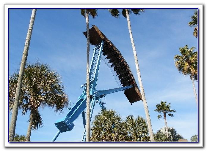 Busch Gardens Tampa Rides Videos