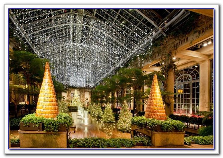 Busch Gardens Williamsburg Hotels Tripadvisor