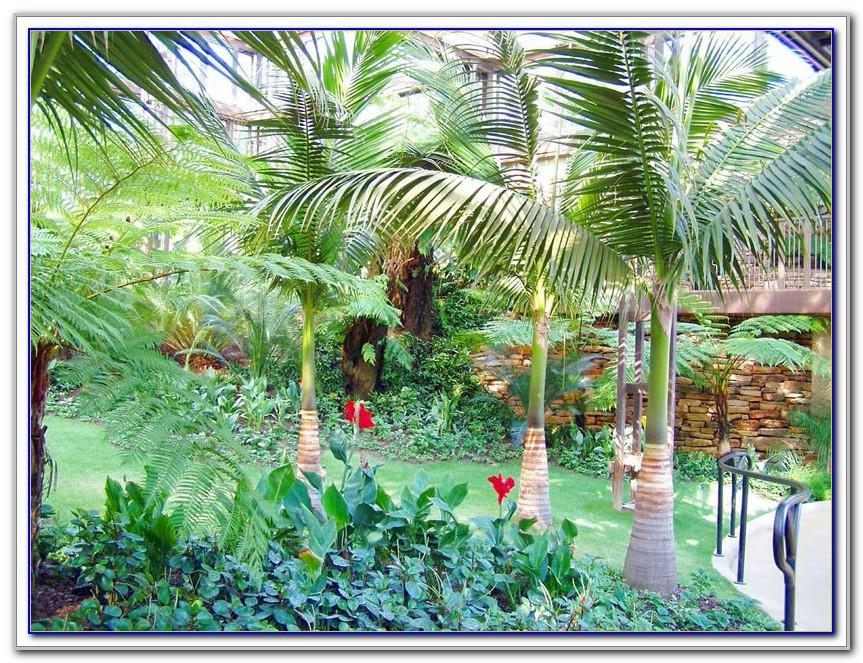 Callaway Gardens Pine Mountain Ga Application