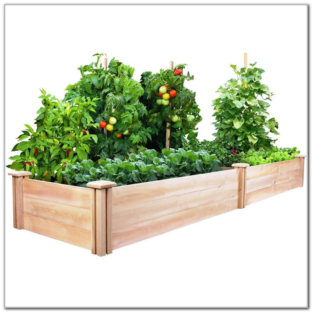 Cedar Raised Garden Beds Home Depot