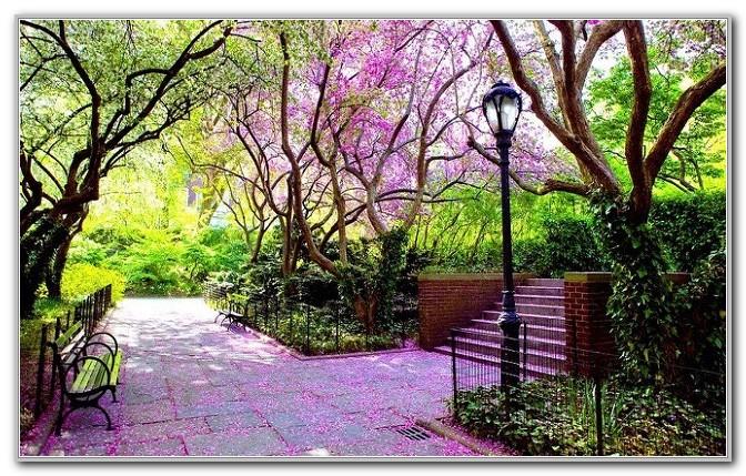 Central Park Conservatory Garden Hours