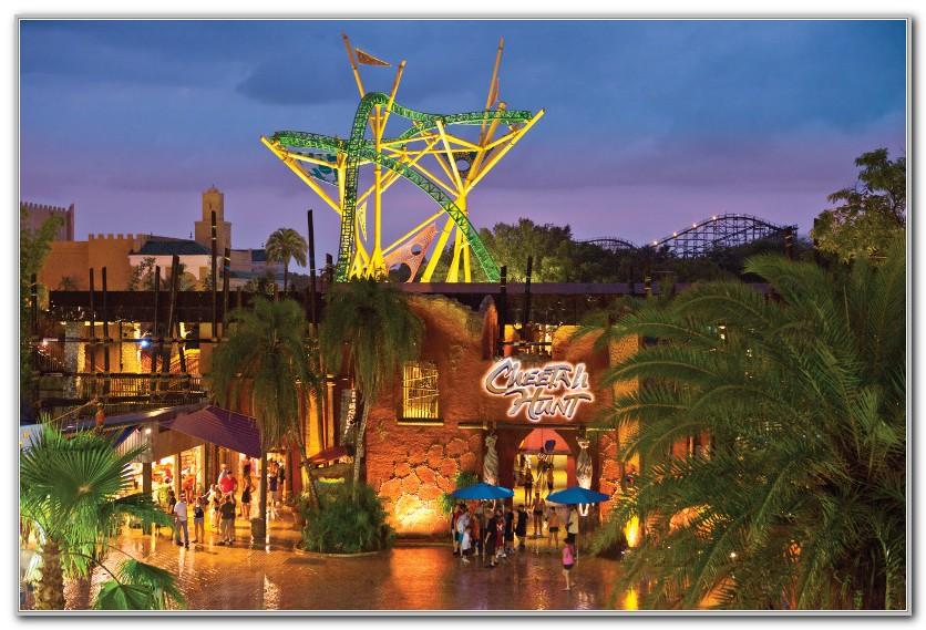 Cheetah Hunt Busch Gardens Height