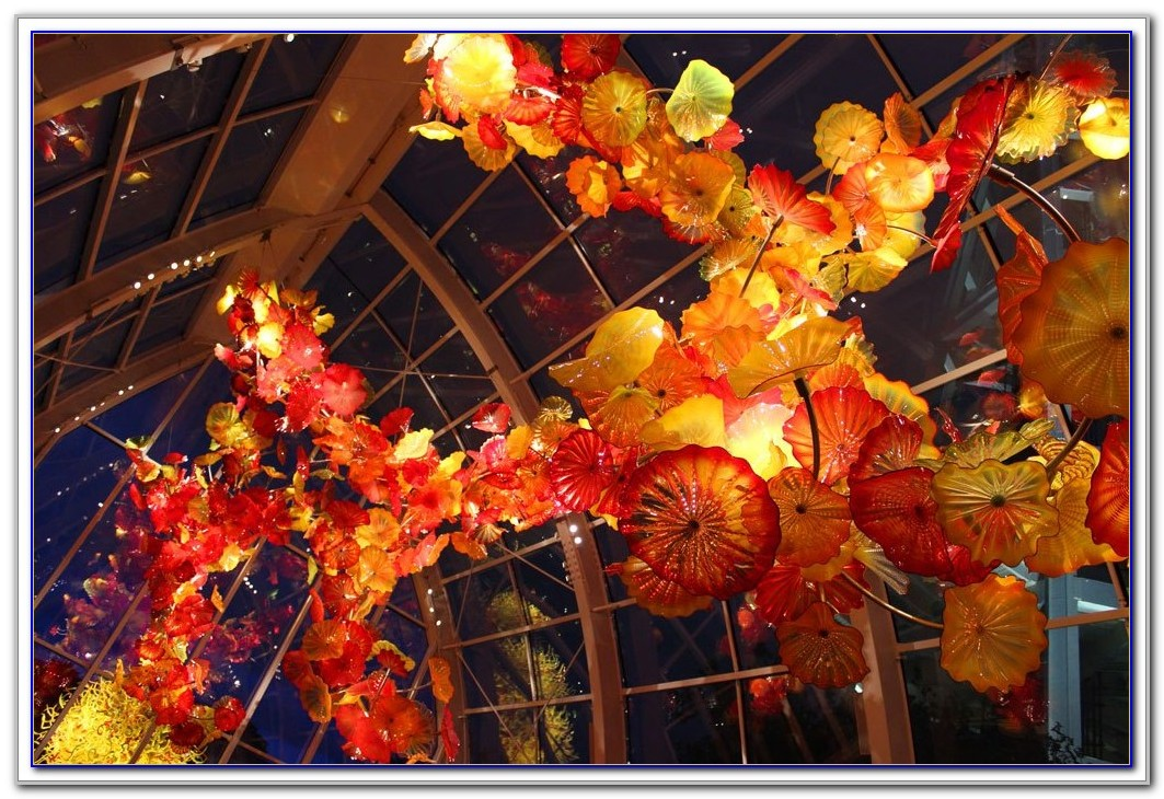 Chihuly Garden And Glass Hours Of Operation