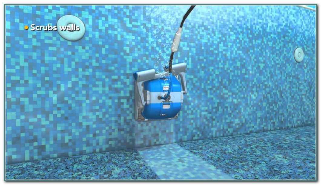 Dolphin Automatic Pool Cleaner