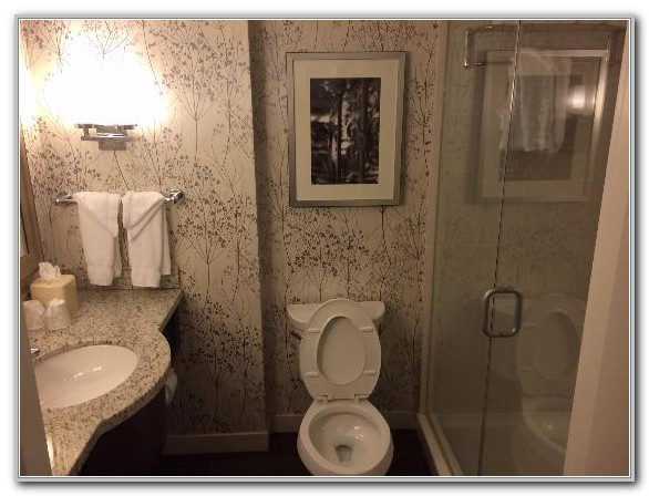 Hilton Garden Inn Atlanta Midtown Tripadvisor