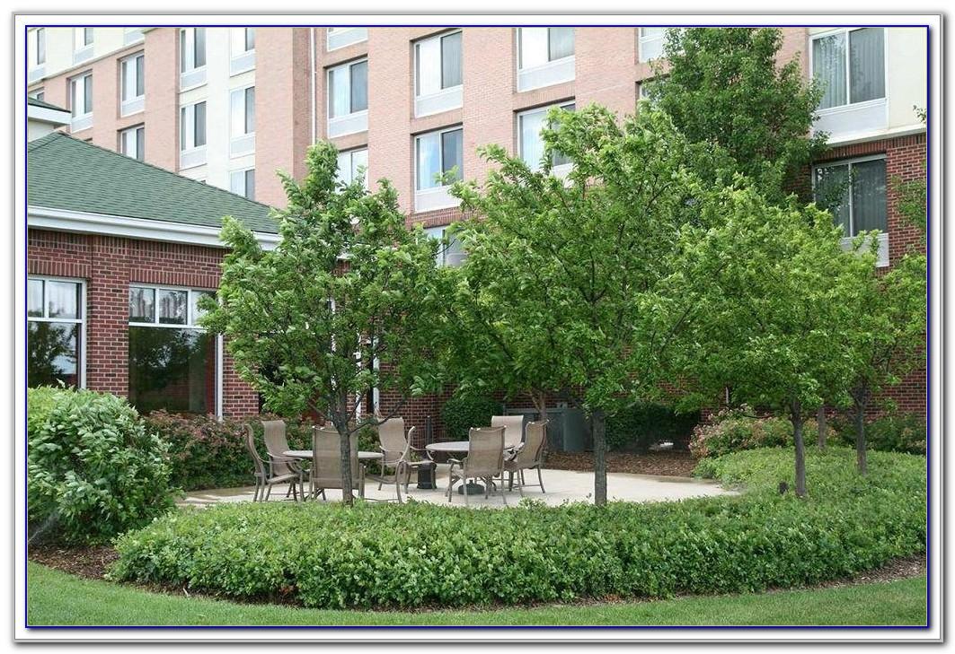 Hilton Garden Inn Detroit Downtown Parking