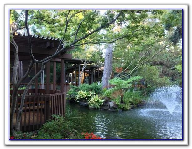 Hilton Garden Inn Palo Alto Restaurant