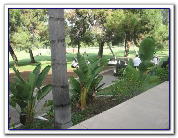 Hilton Garden Inn Ponte Vedra Tripadvisor