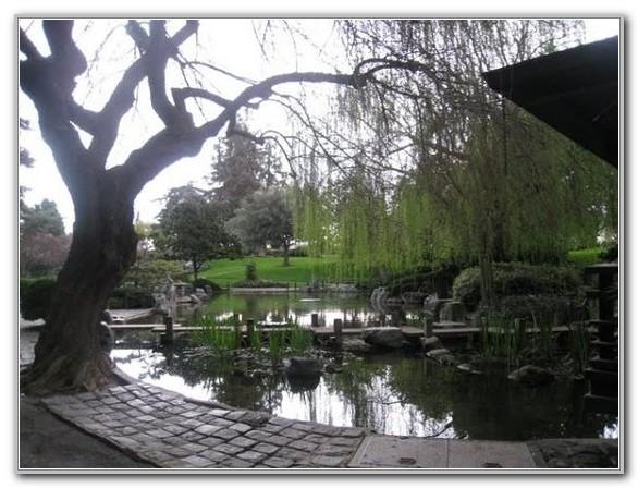Japanese Friendship Garden San Jose