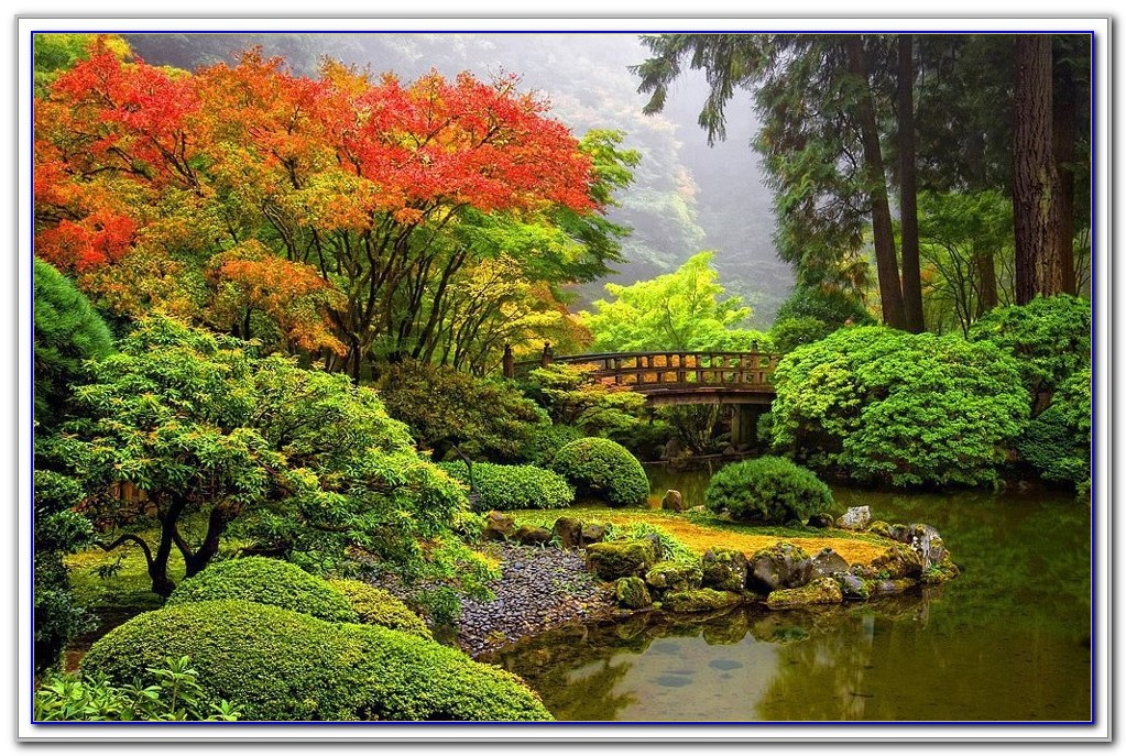 Japanese Garden Nursery Portland Oregon