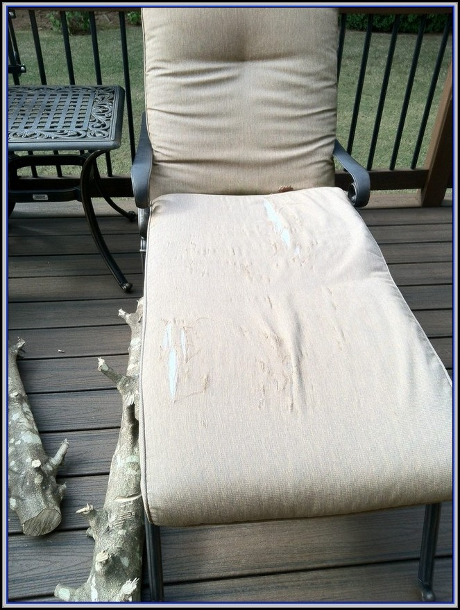 Kmart Martha Stewart Patio Furniture Replacement Cushions
