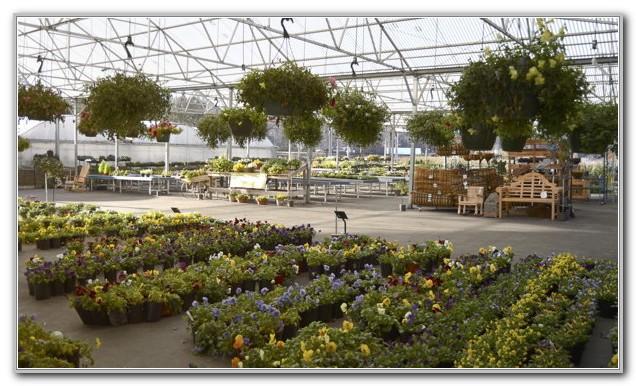 Lakeland Yard And Garden Jackson Mississippi