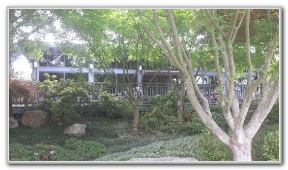 Lewis Ginter Botanical Garden Tea House