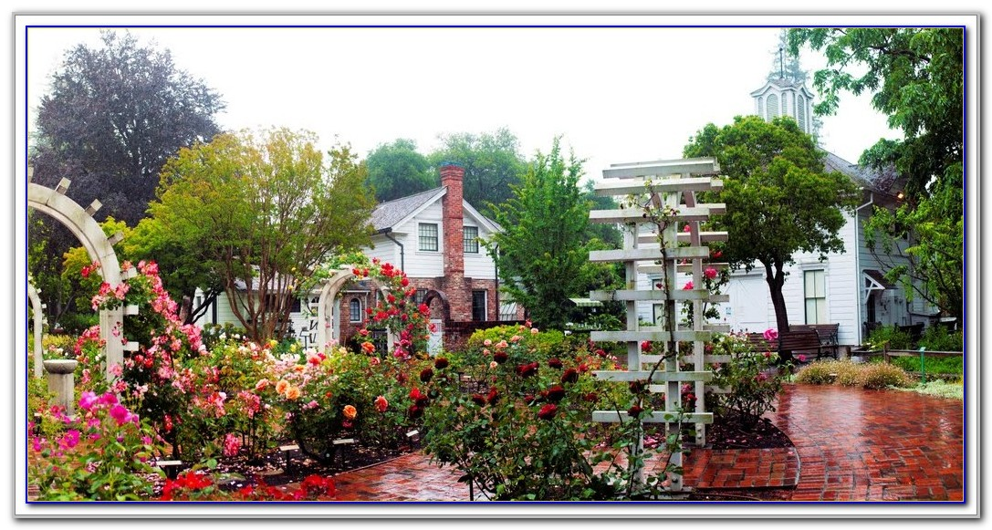 Luther Burbank Home And Gardens Wedding