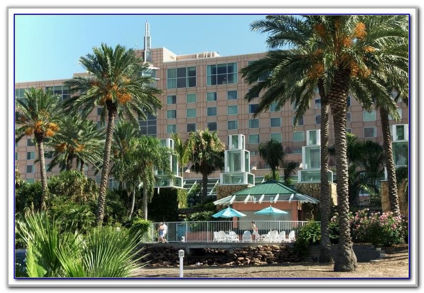 Moody Gardens Hotel Galveston Check In Time