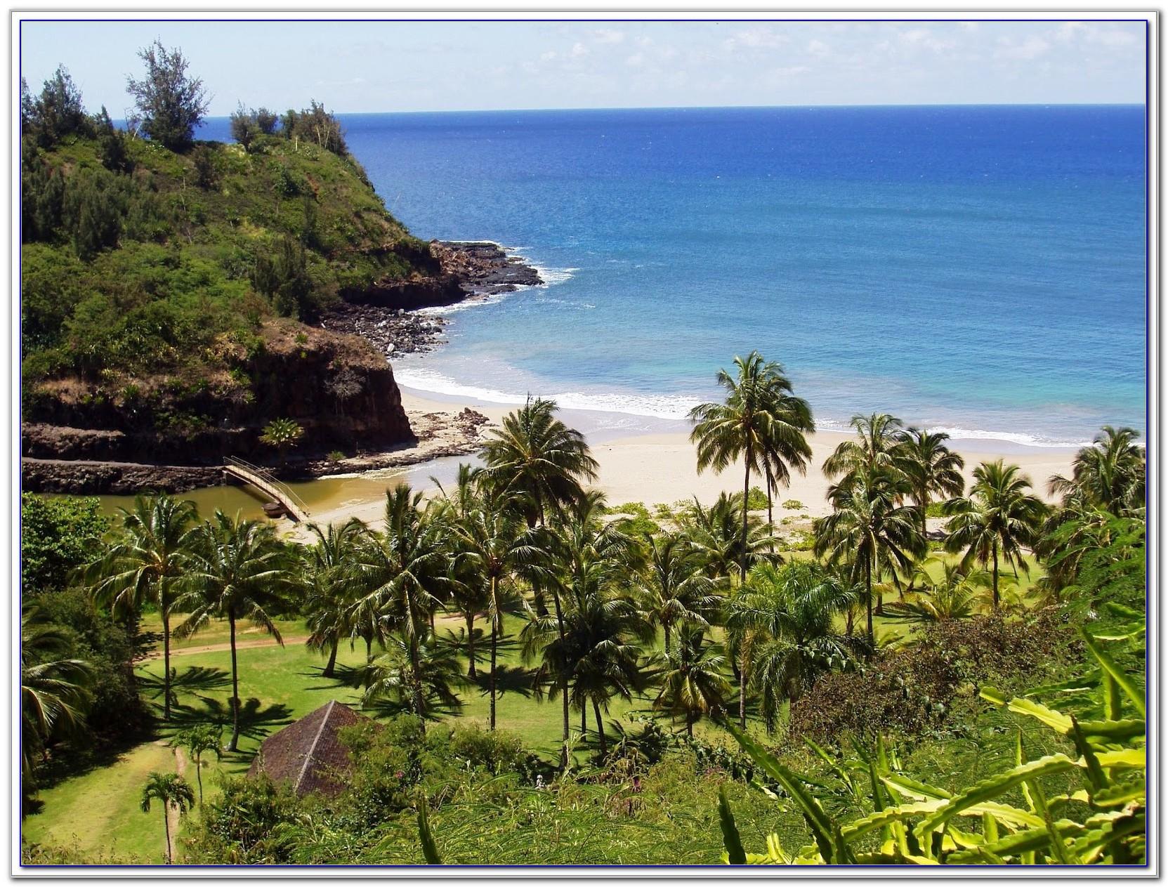 National Tropical Botanical Garden Jobs