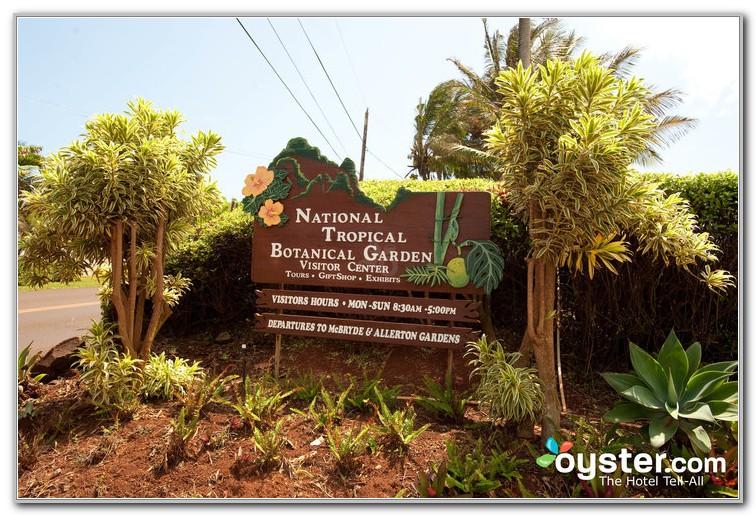 National Tropical Botanical Garden Kalaheo