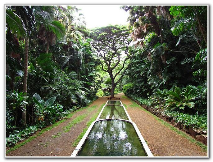 National Tropical Botanical Gardens Kauai