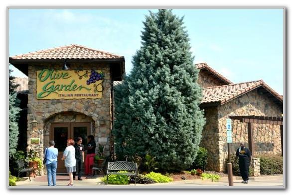 Olive Garden Concord Nc