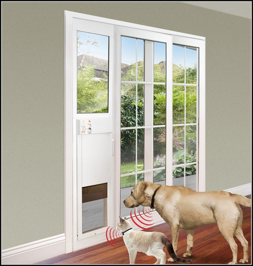 Patio Door With Dog Door Built In