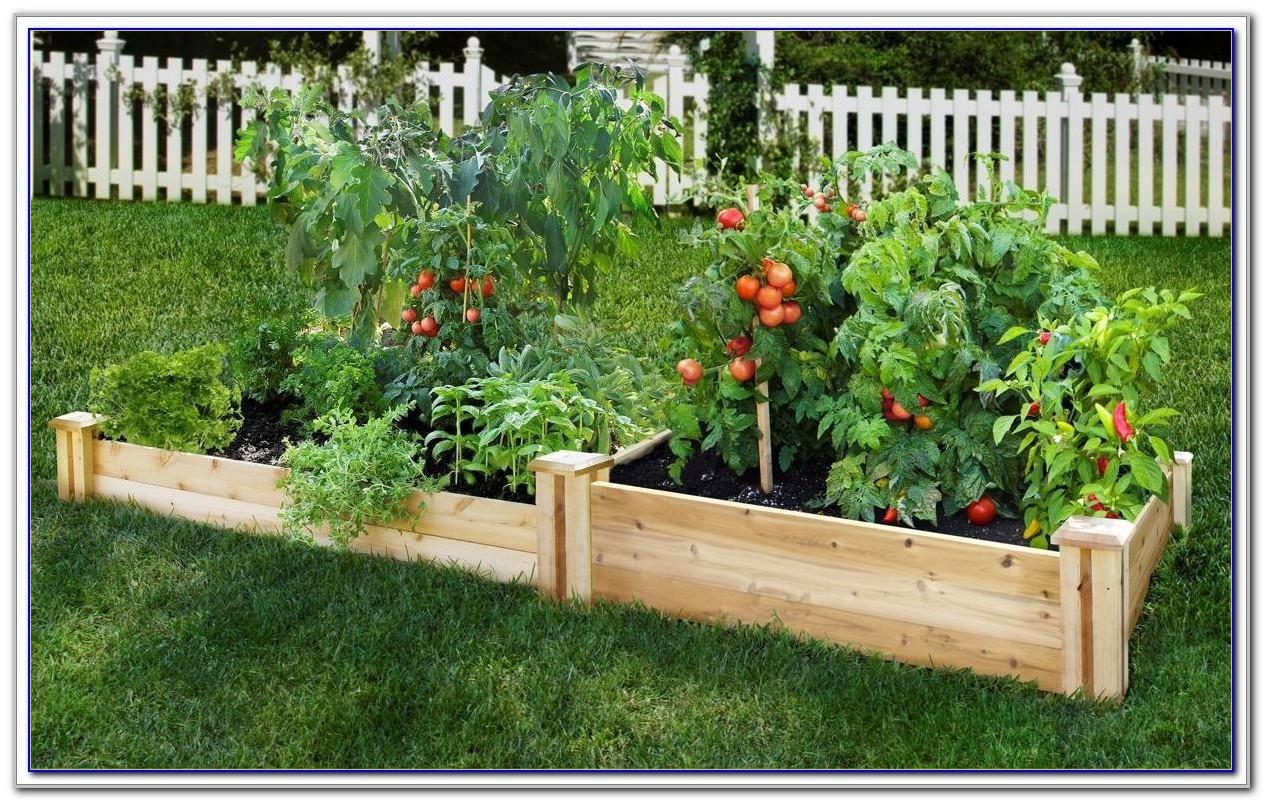 Raised Bed Garden Kit Uk