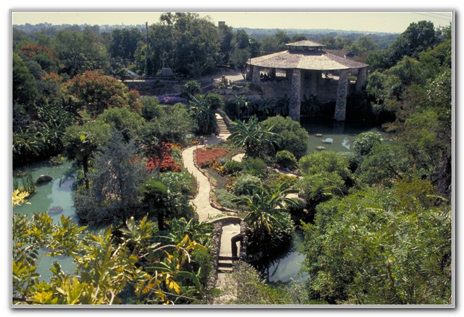 San Antonio Japanese Tea Garden