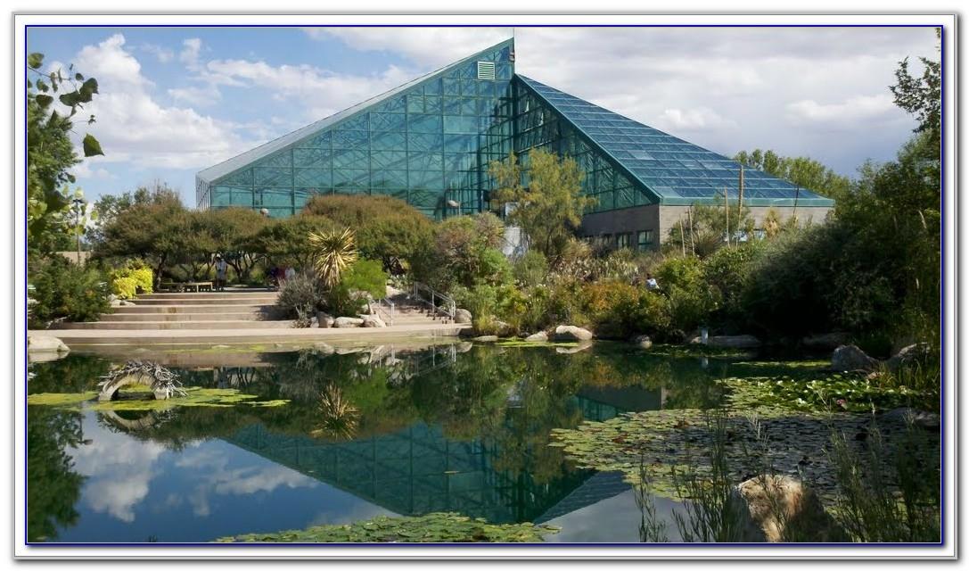 San Diego Botanical Gardens Hours