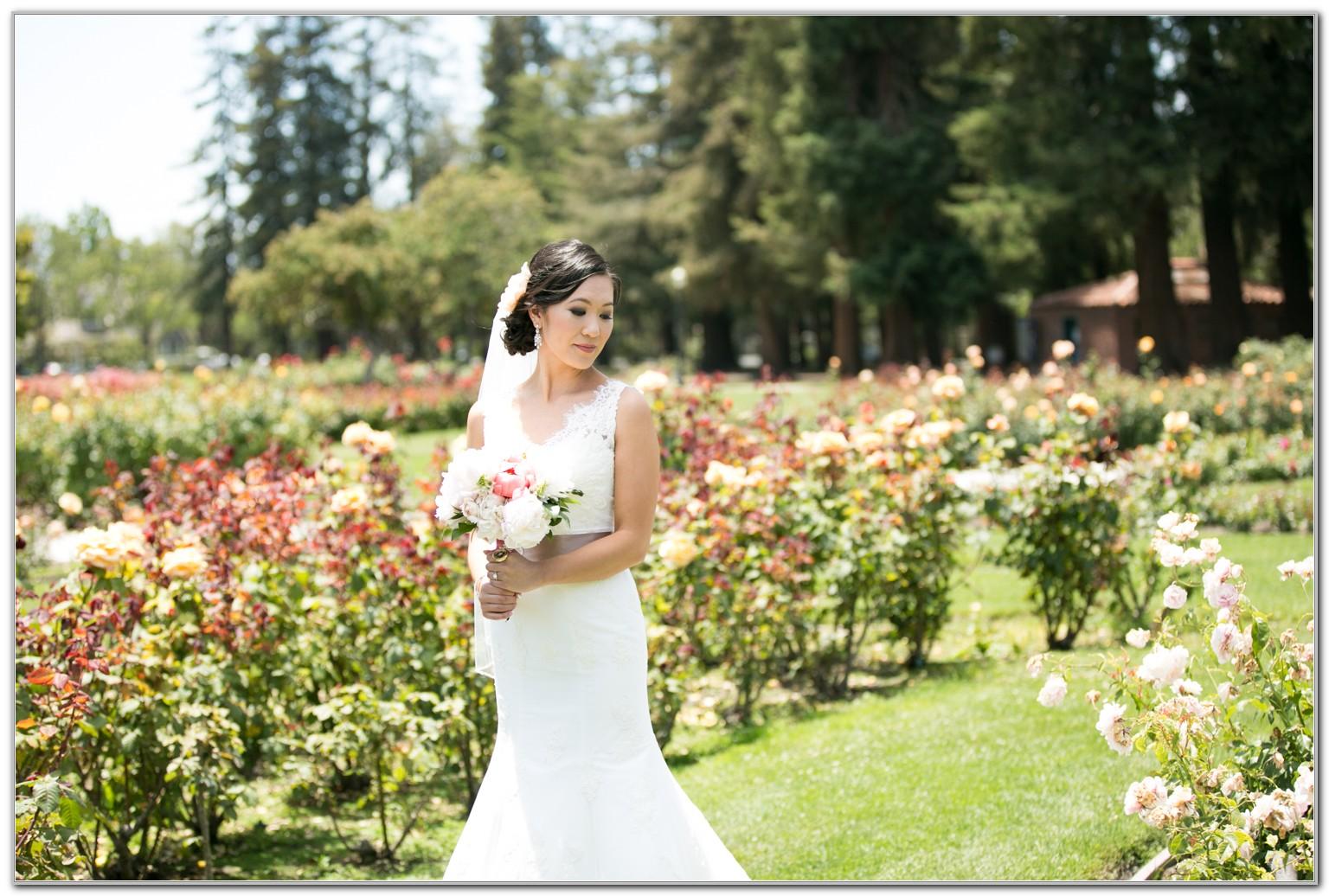 San Jose Municipal Rose Garden Wedding