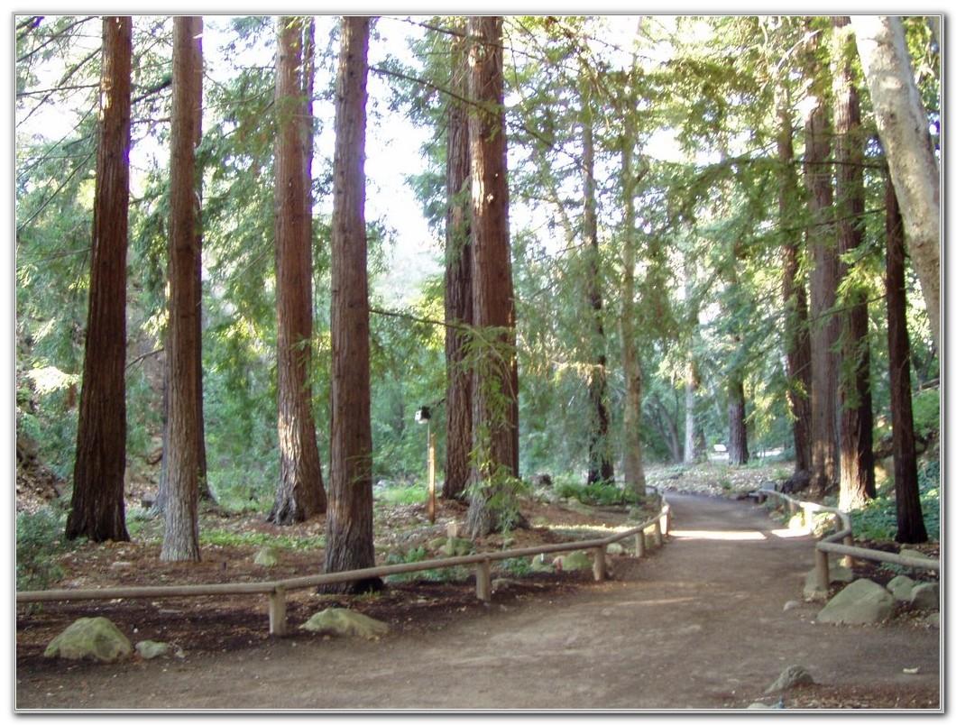 Santa Barbara Botanic Garden Jobs