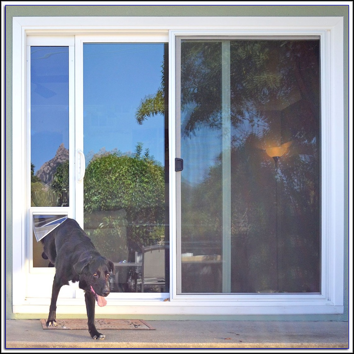 Sliding Door Dog Door Diy