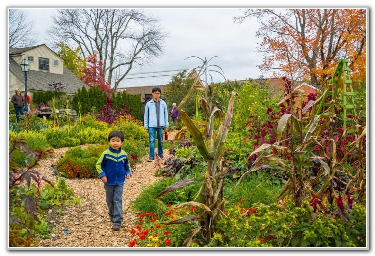 Tower Hill Botanic Garden Fall Fest