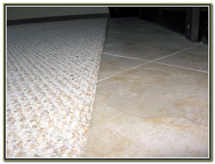 Carpet To Tile Transition Strip Menards