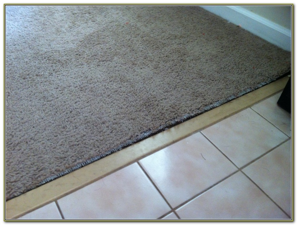 Carpet To Tile Transition Strips