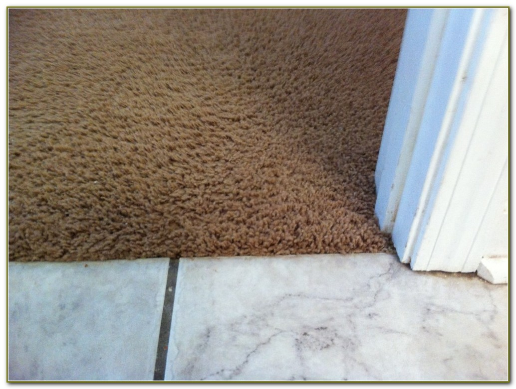 Carpet To Tile Transition