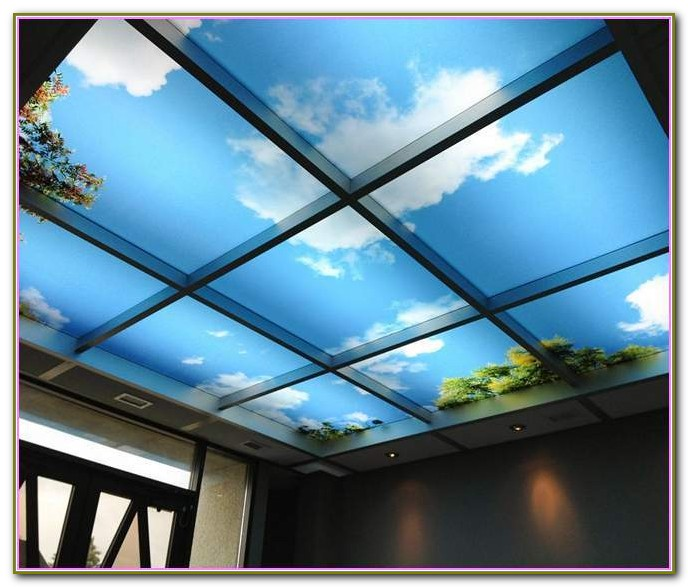 Drop Ceiling Tiles 2x4