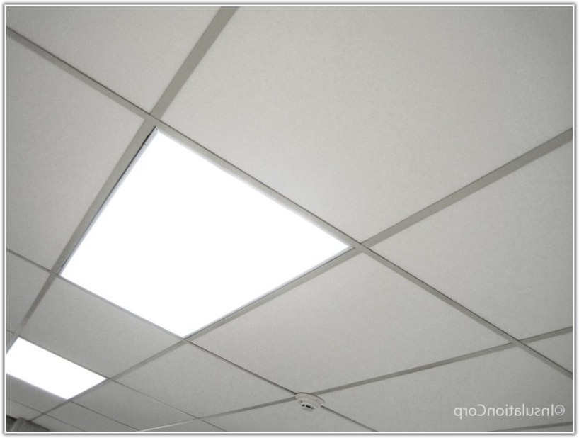 2 By 4 Ceiling Tiles