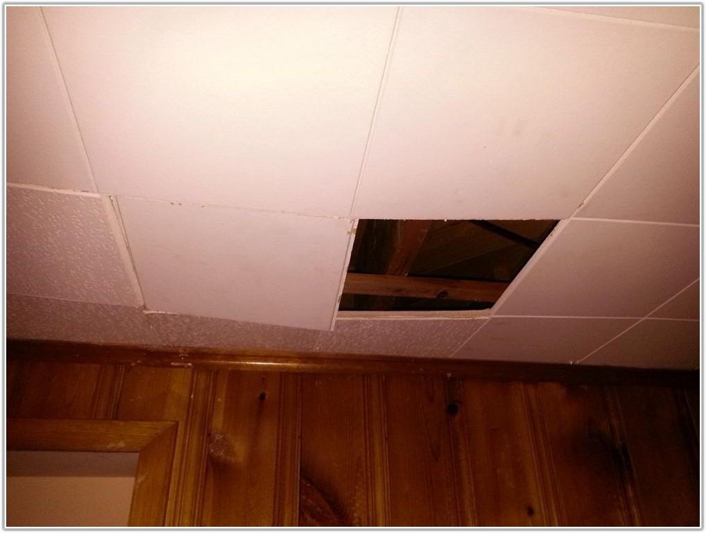 Basement Drop Ceiling Tiles Home Depot