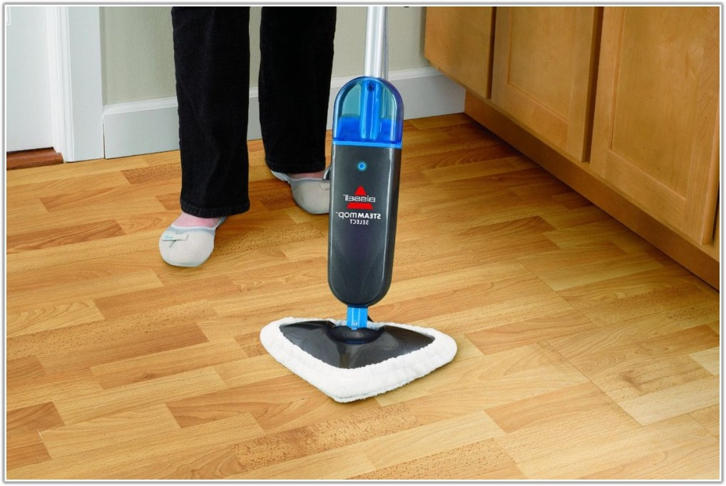Steam Cleaner For Tile And Wood Floors