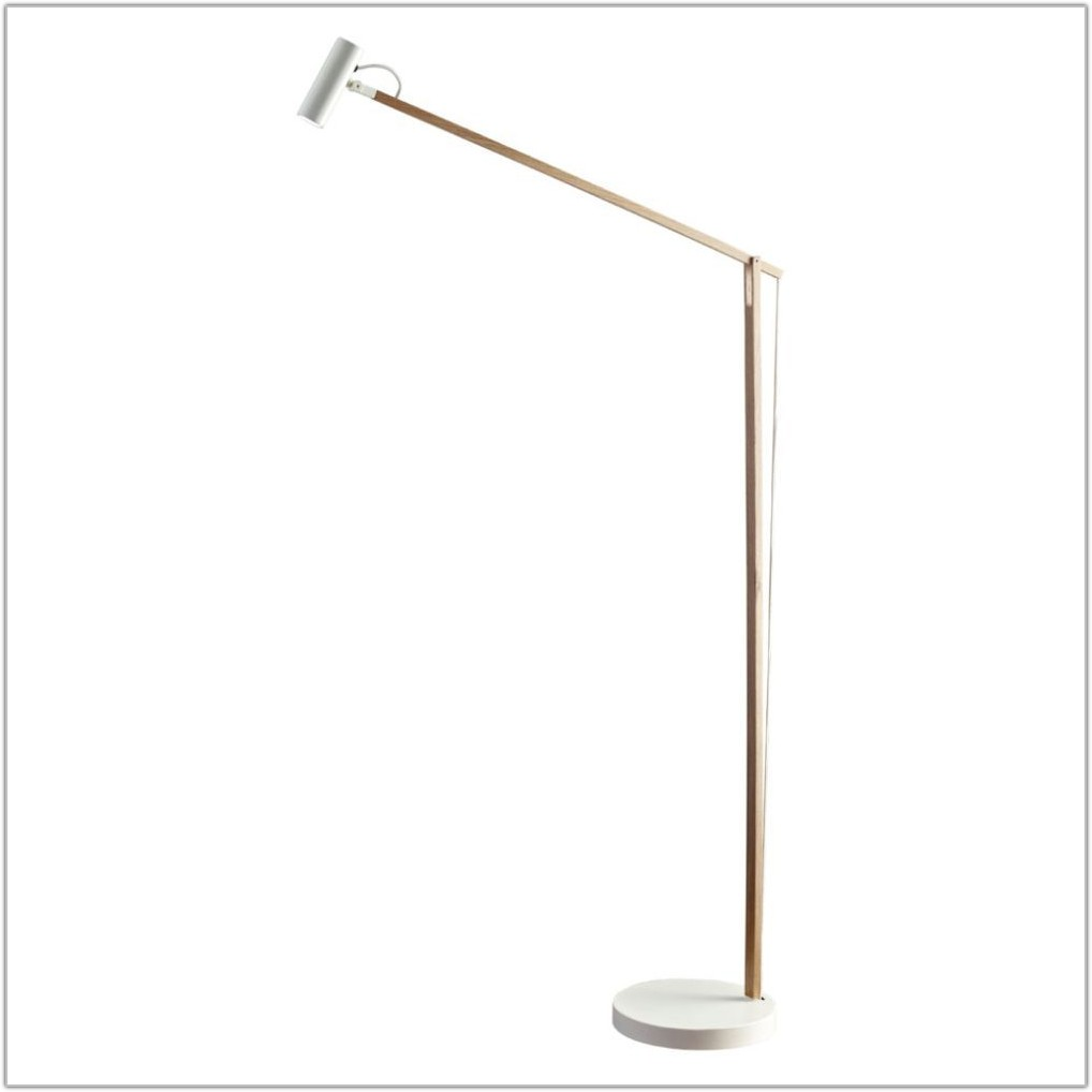 Balanced Spectrum Floor Lamp Ballast