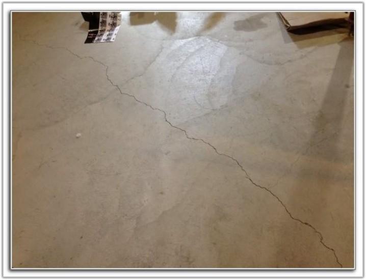 Cat Urine Concrete Floor