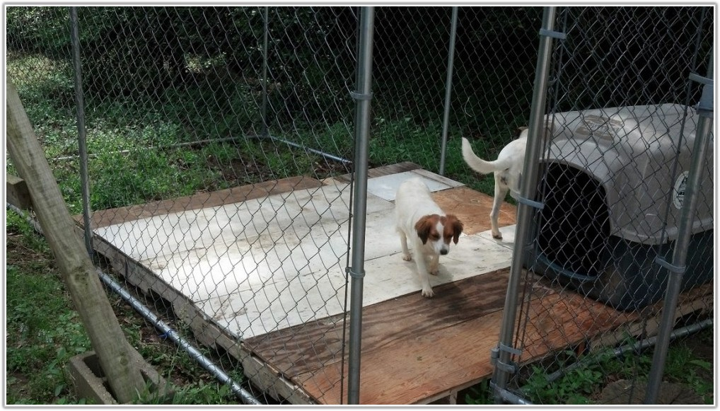 Dog Kennel Flooring Ideas