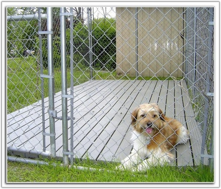 Outdoor Dog Kennel Flooring Options