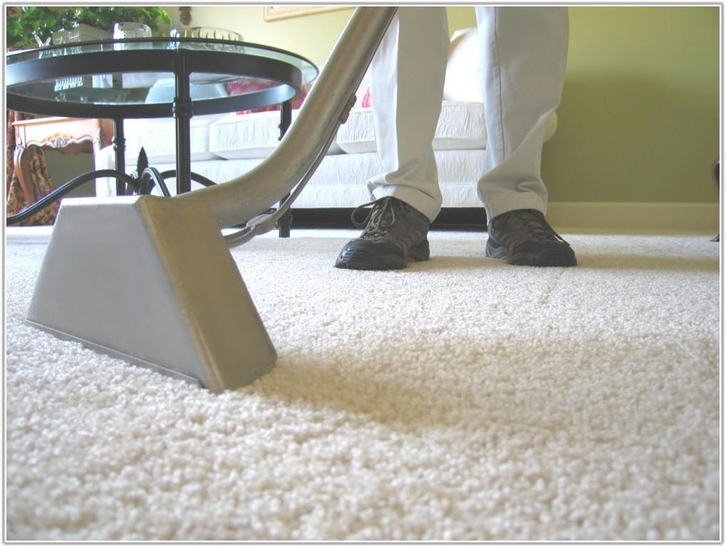 Steam Cleaner For Hardwood Floors And Carpet