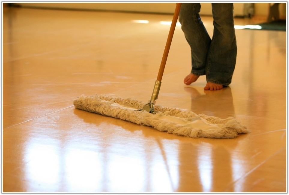 Wet Mop For Hardwood Floors