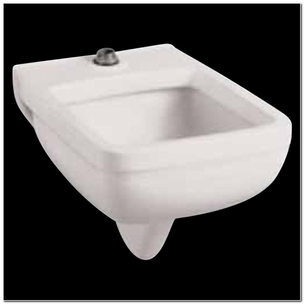 American Standard Clinical Sink Carrier