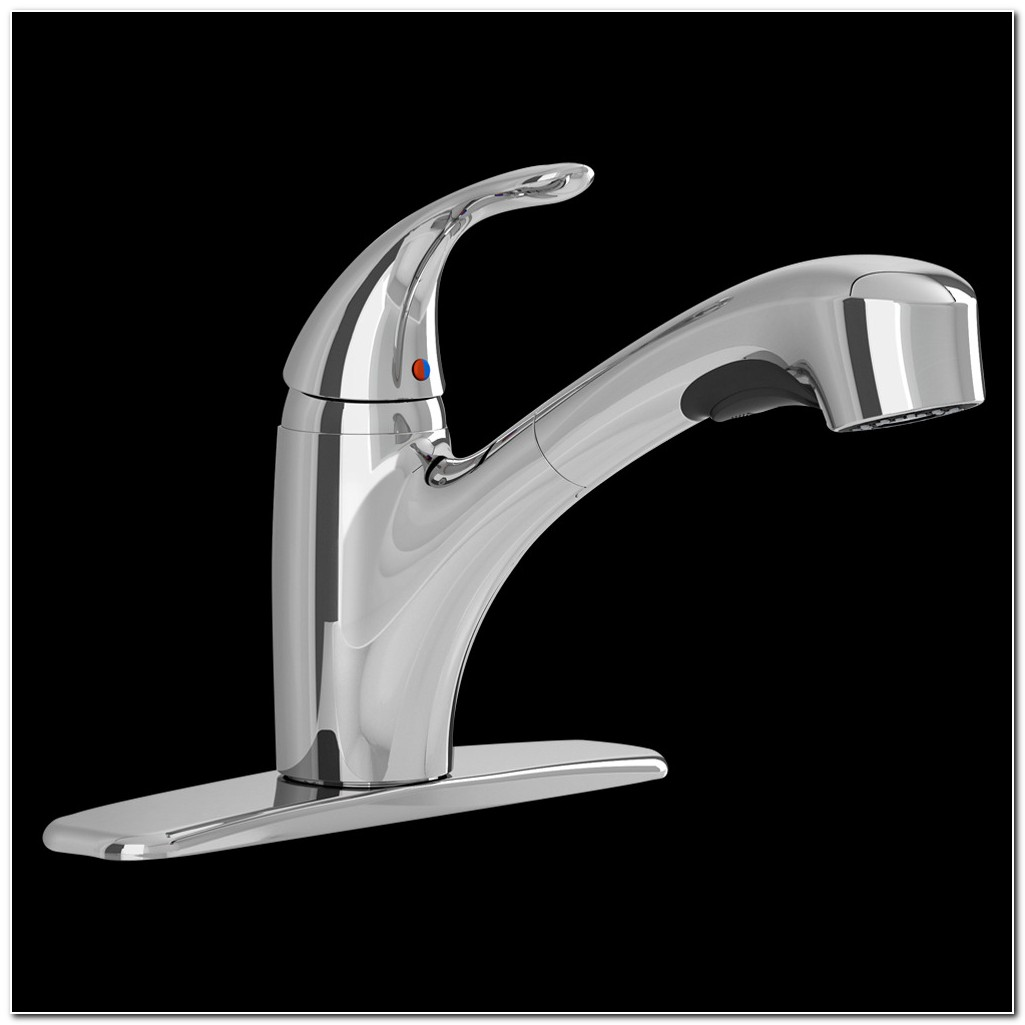 American Standard Pull Out Faucet