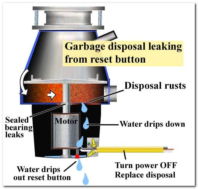 In Sink Garbage Disposal Leaking