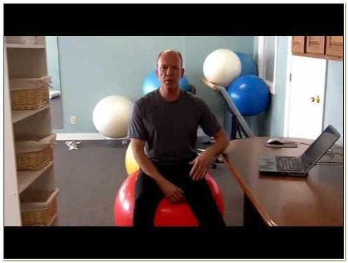 75cm Exercise Ball Chair