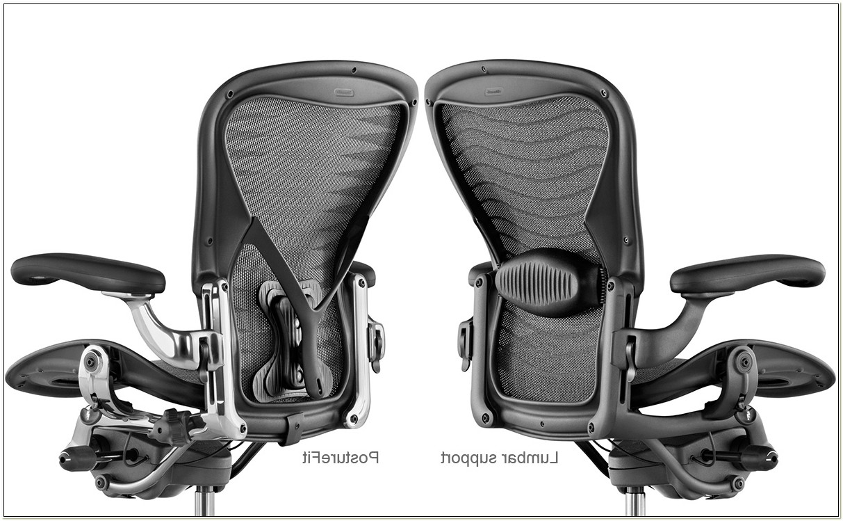 Aeron Chair Back Support