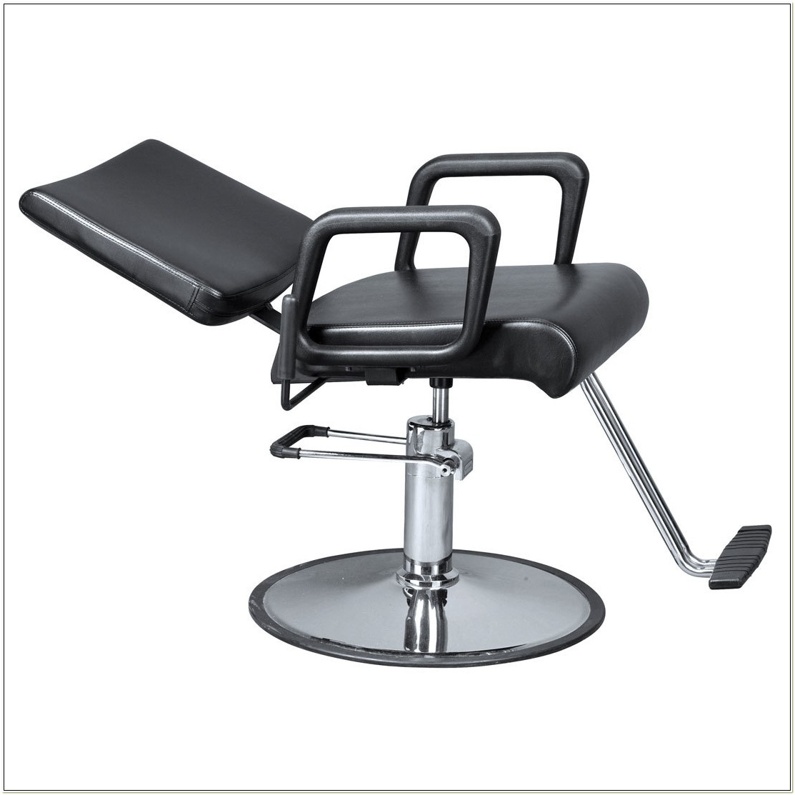 All Purpose Salon Chair Free Shipping